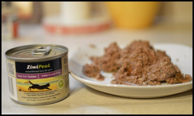 Best-Canned-Kitten-Food Best Kitten Wet Food in UK And Australia