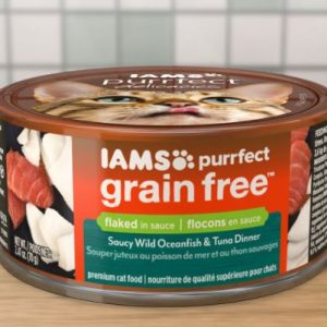 No-Grain-Cat-Food-1 Why No Grain Cat Food? This is the Explanation