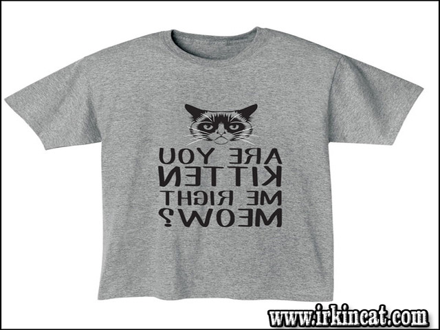 are-you-kitten-me-right-meow-shirt An Actionable Plan on Are You Kitten Me Right Meow Shirt in Step by Step Order