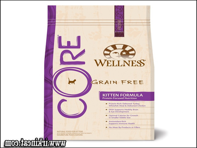 The Fundamentals Of Wellness Core Kitten Food Revealed