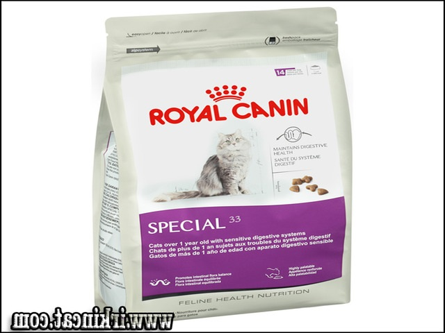 best-kitten-dry-food New Ideas Into Best Kitten Dry Food Never Before Revealed
