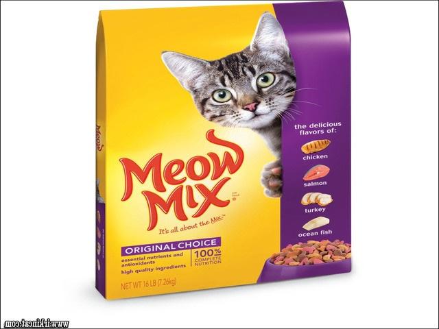 best-kitten-food-brands Vital Pieces of Best Kitten Food Brands