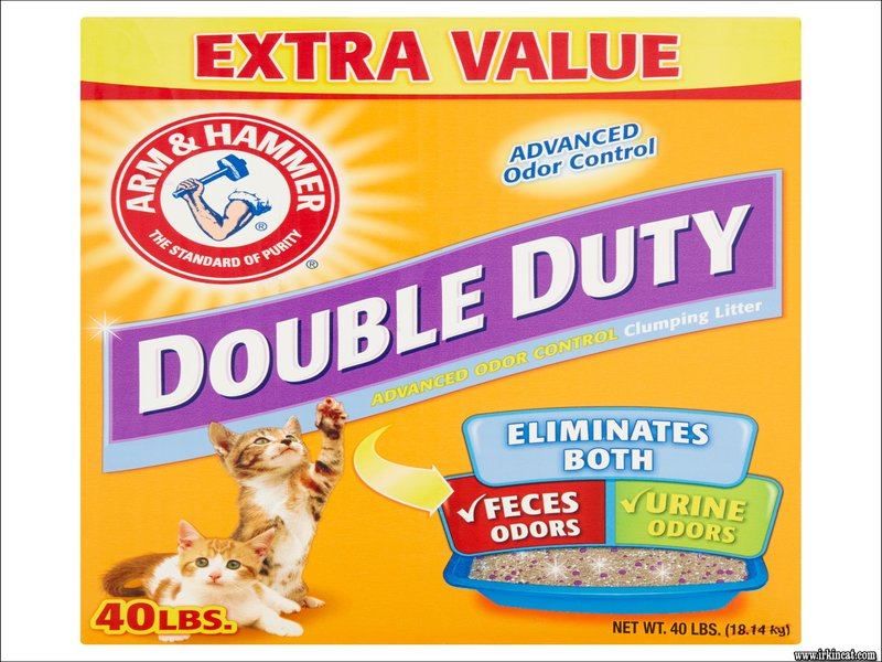 arm-and-hammer-kitty-litter Things You Won't Like About Arm And Hammer Kitty Litter and Things You Will