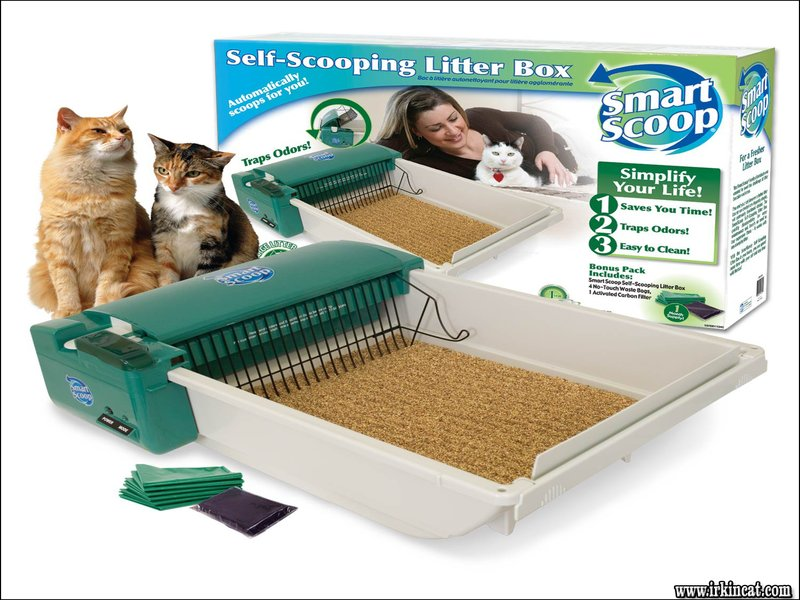 automatic-kitty-litter-boxes Top Automatic Kitty Litter Boxes Guide!