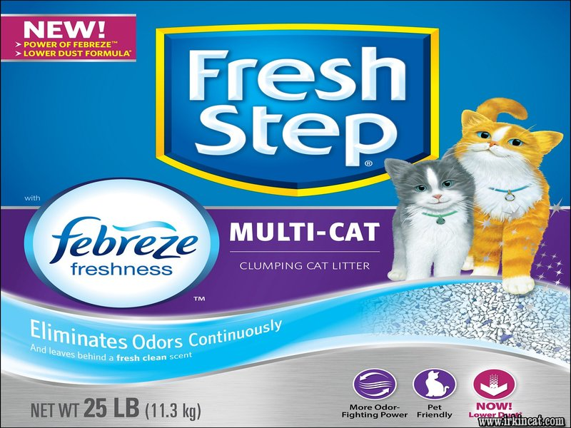 fresh-step-kitty-litter The Appeal of Fresh Step Kitty Litter