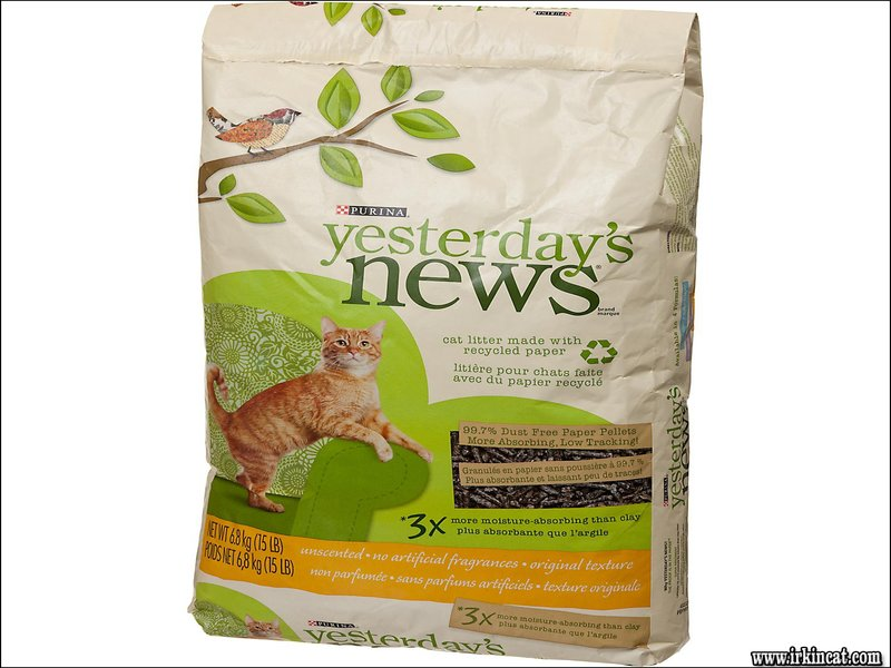 yesterdays-news-kitty-litter The Secret to Yesterdays News Kitty Litter