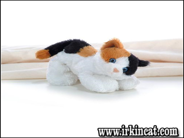 calico-cat-stuffed-animal Calico Cat Stuffed Animal Features