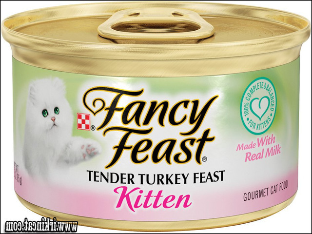 fancy-feast-kitten-food Fancy Feast Kitten Food Ideas