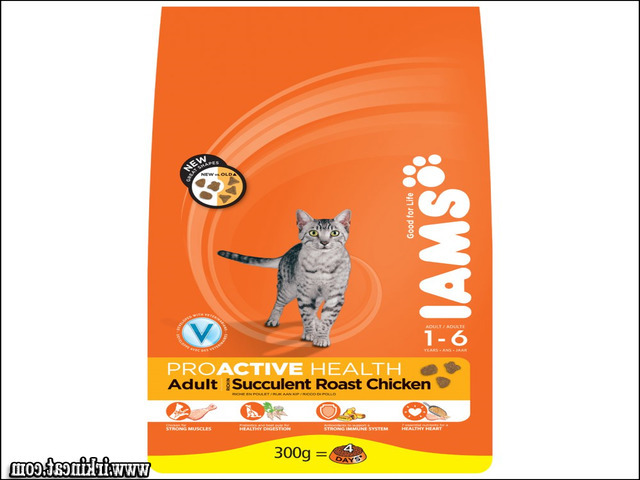 iams-kitten-food-review The Definitive Strategy for Iams Kitten Food Review