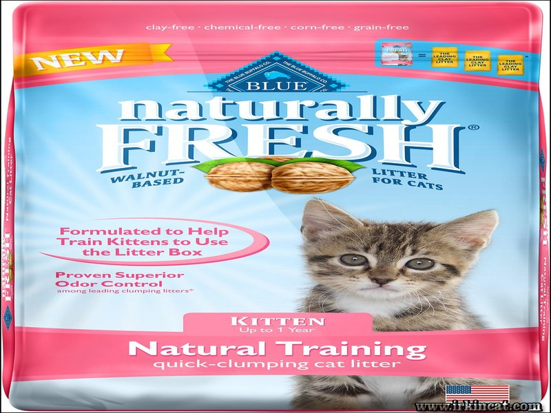 best-kitty-litter-for-kittens Whispered Best Kitty Litter For Kittens Secrets
